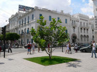 tunis ulice 5